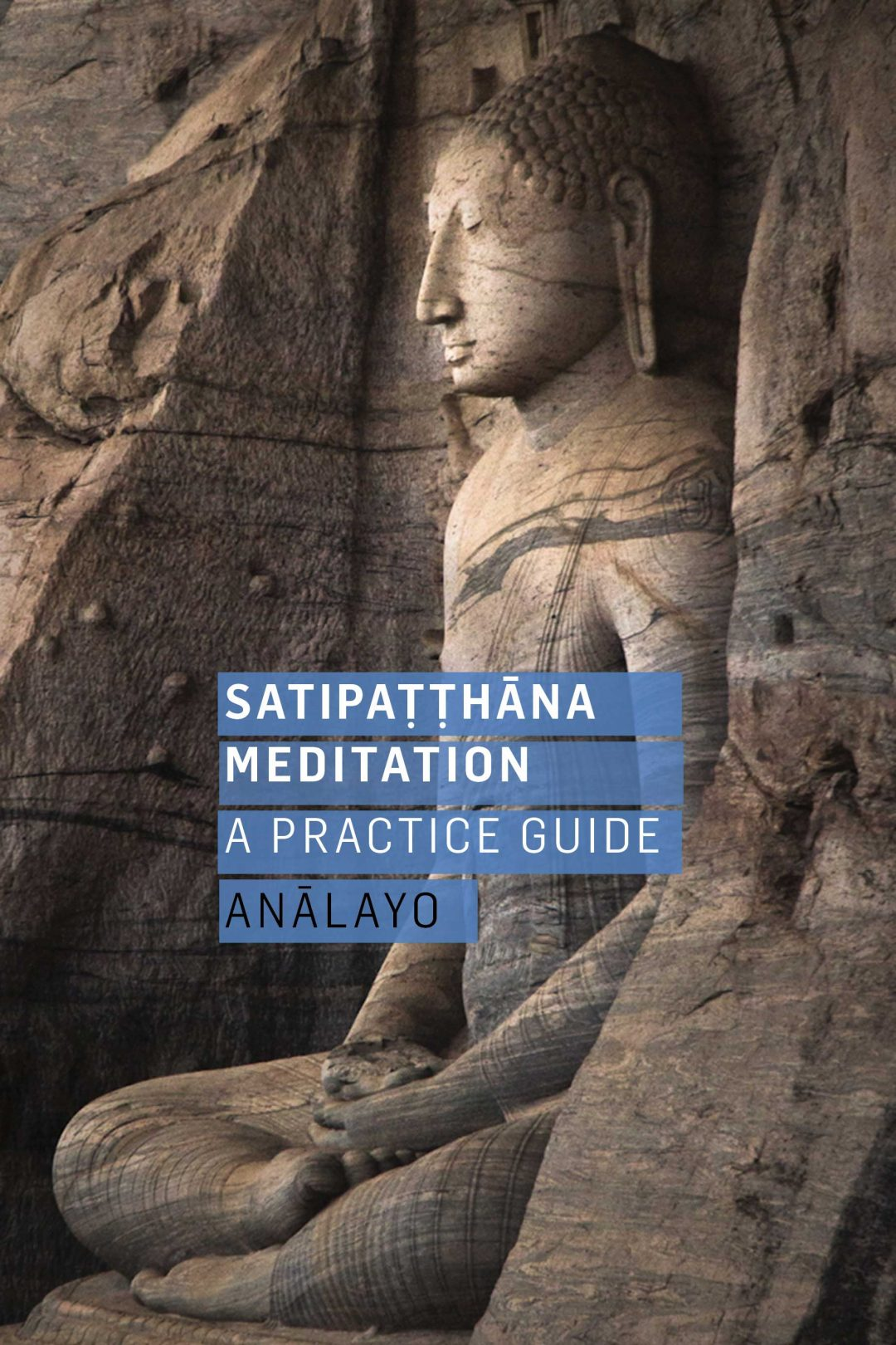 Analayo - Satipatthana Meditation - a practice guide