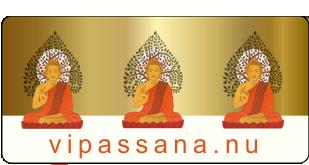 Website collectief Vipassana.nu