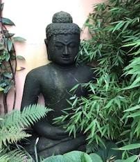 Boeddha Vipassana.nu